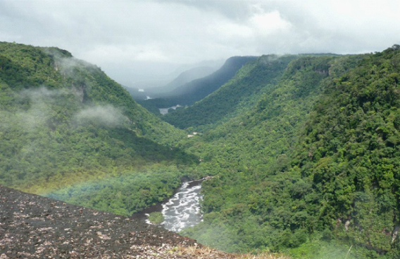 Image: Brave New World, Jeff Pickering, digital photograph, Guyana, 2014